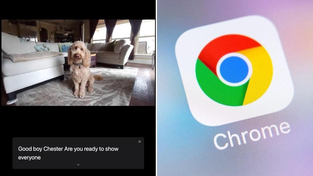 Google Chrome'a Yeni Altyazı Özelliği