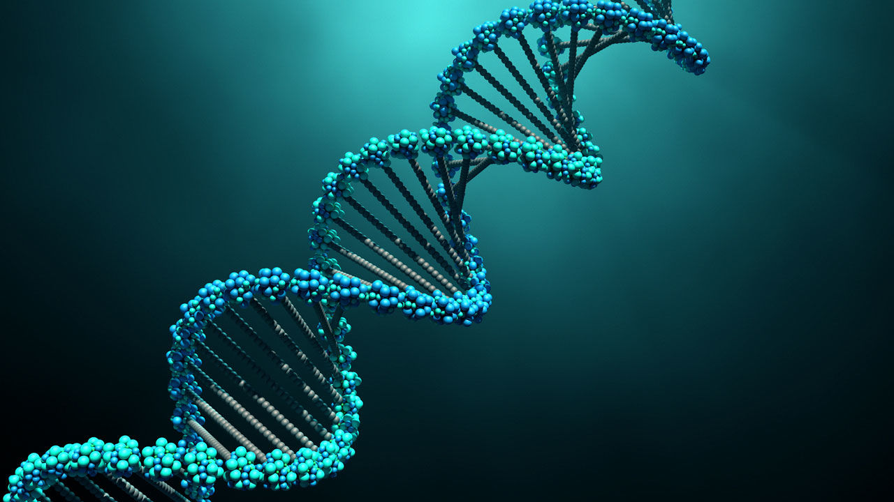 DNA robots and nano devices